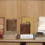 Ranjene knjige u Vukovaru